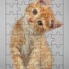 จิ๊กซอว์ 40ชิ้น พร้อมถาดรอง ลายทั่วไป วิว หมาแมว เรือ ทะเล ภูเขา Jigsaw Puzzle