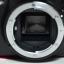 (Sold out)Nikon D3100+Lens Kit thumbnail 6